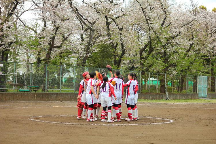 202103soft_sakura (2).jpg